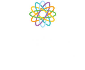 The Learning Collaborative RTO Training